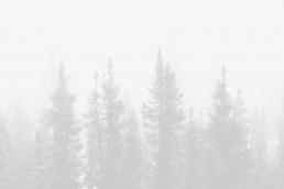 image-placeholder-13-min